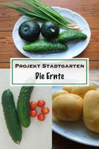 Projekt Stadtgarten - Die Ernte